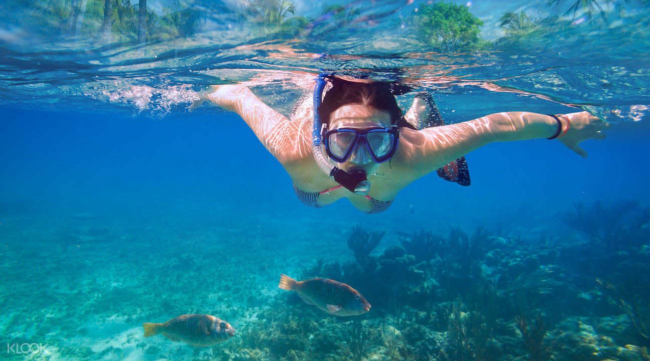 Snorkeling: che cos'è e come praticare quest'attività nel tempo libero